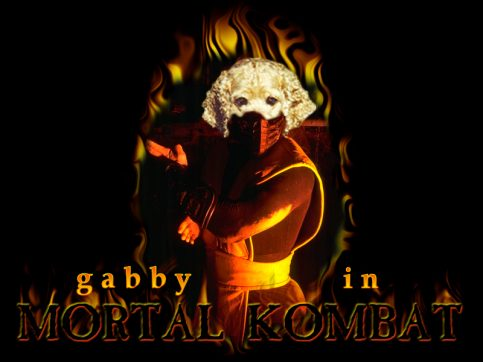 Mortal Kombat Gabby...picture and music loading...
