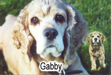 Click to enter Gabby's Page